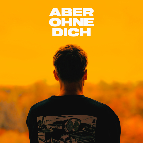 Aber ohne dich - cover